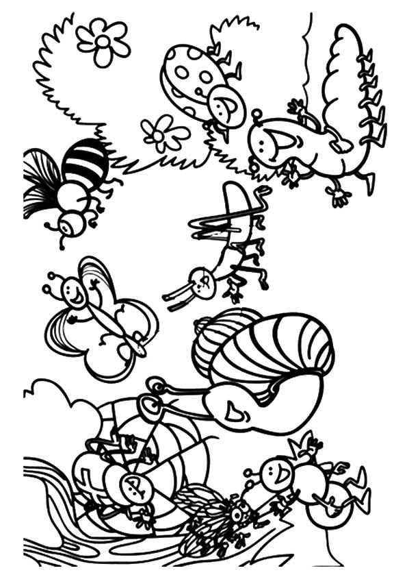 käfer: ausmalbilder & malvorlagen - 100% kostenlos