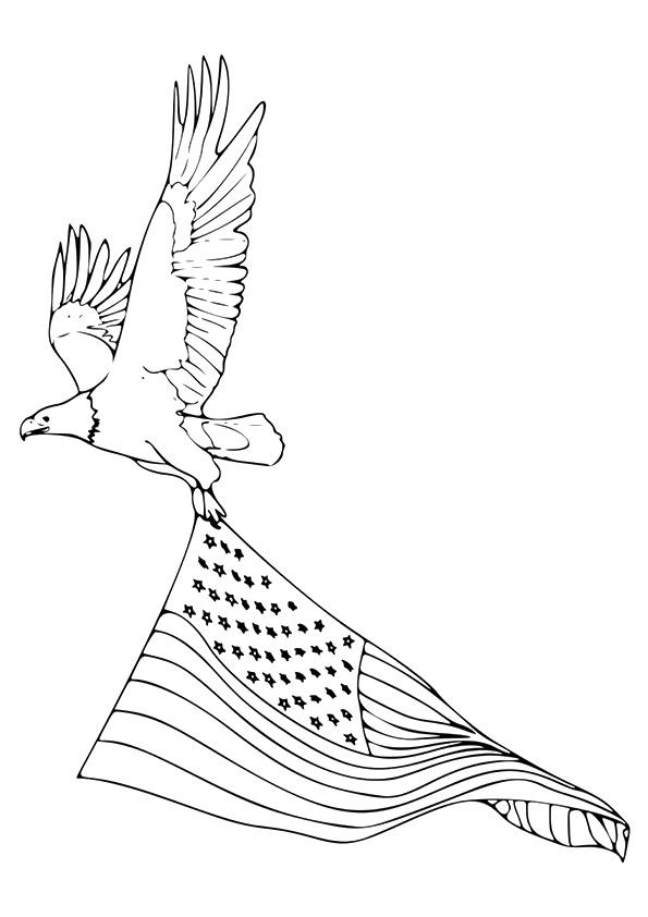 adler-ausmalbild-0020-q2