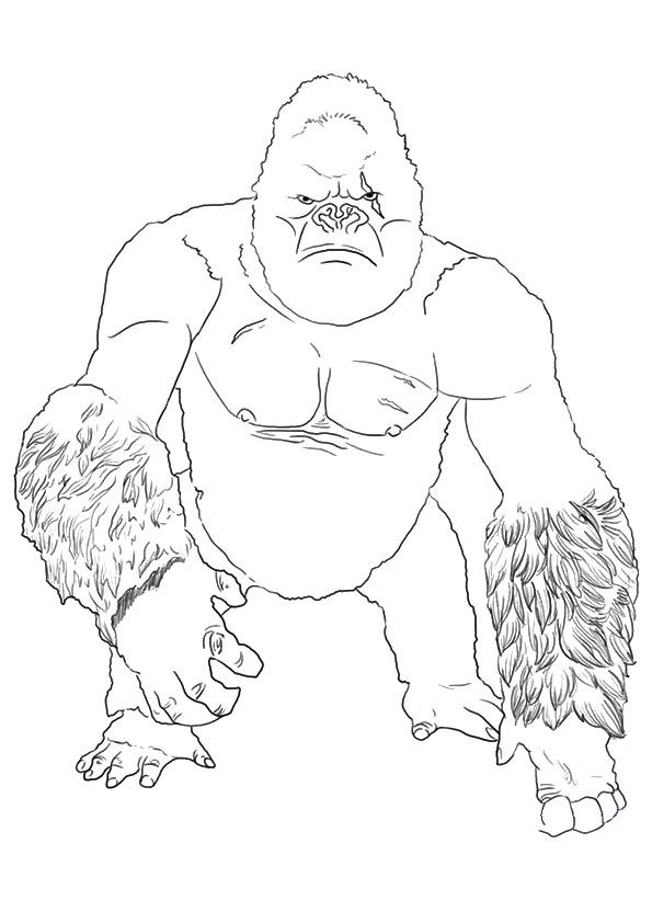 gorilla ausmalbilder  malvorlagen  100 kostenlos