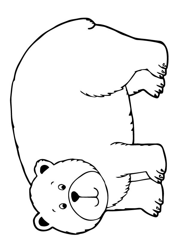 grizzly bär ausmalbilder  malvorlagen  100 kostenlos