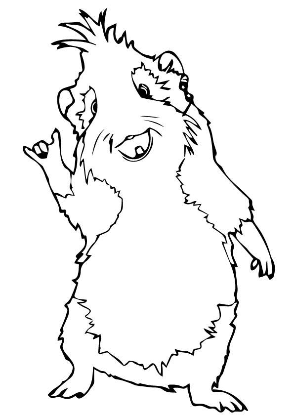 meerschweinchen-ausmalbild-0009-q2
