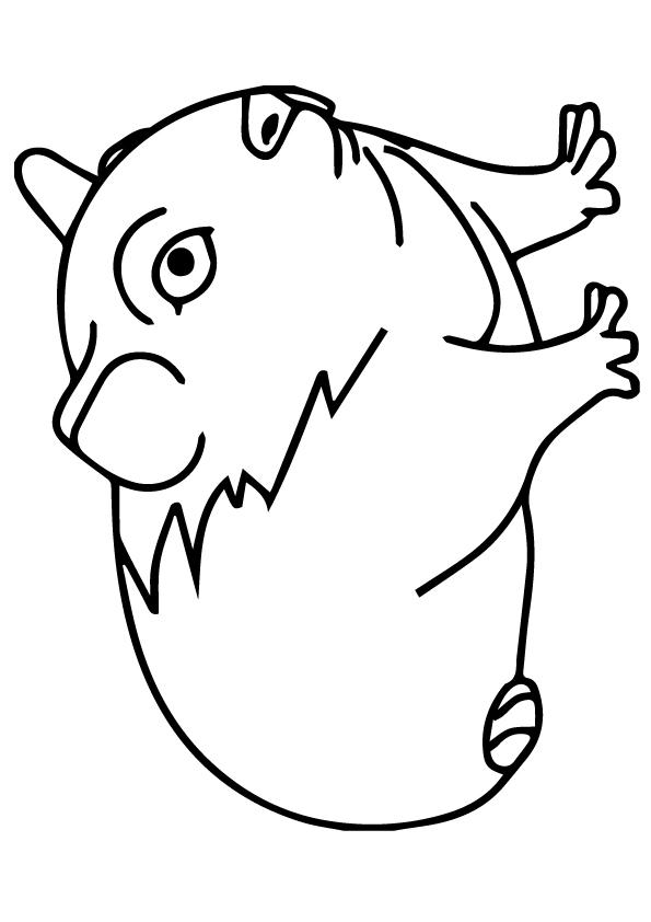 meerschweinchen-ausmalbild-0025-q2