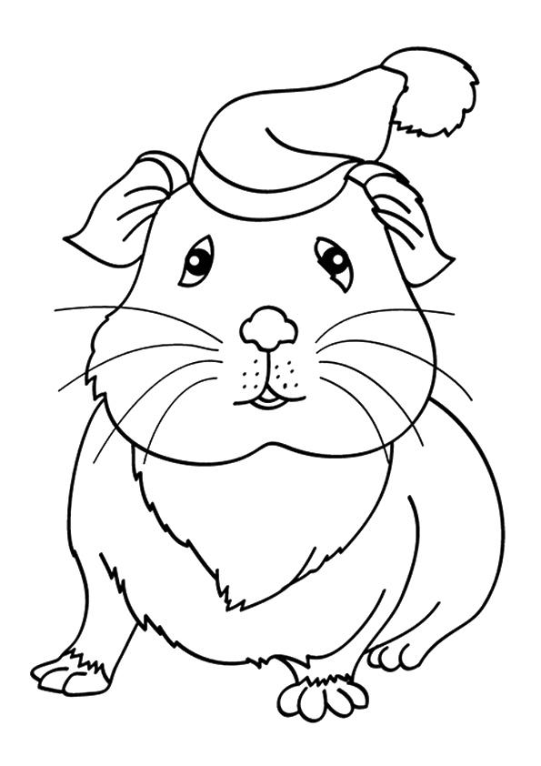 meerschweinchen-ausmalbild-0026-q2