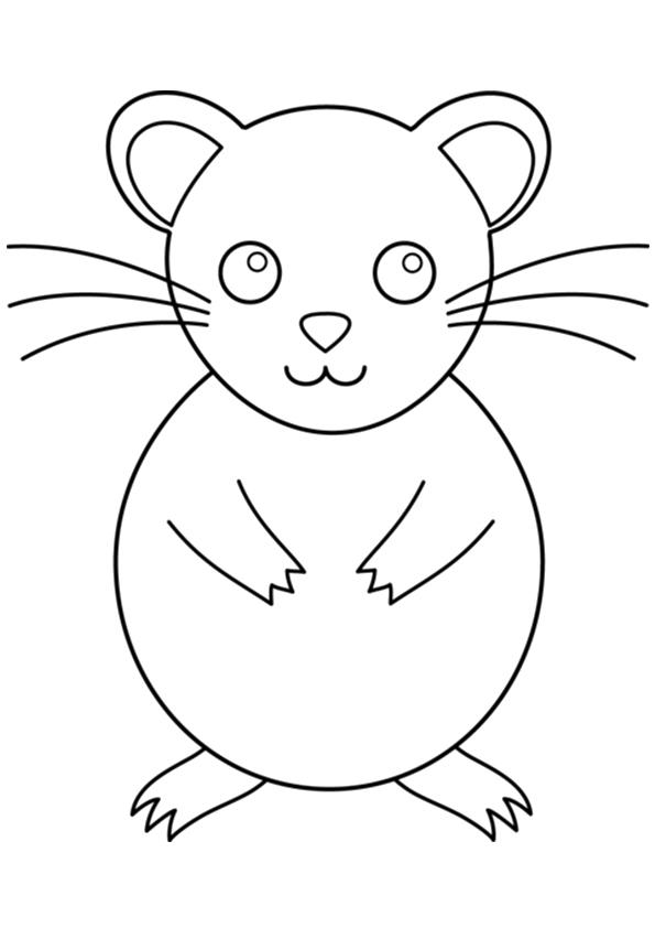 hamster ausmalbilder  malvorlagen  100 kostenlos