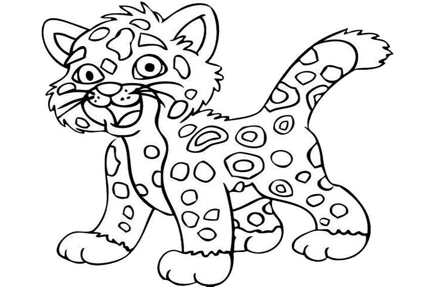 jaguar ausmalbilder  malvorlagen  100 kostenlos