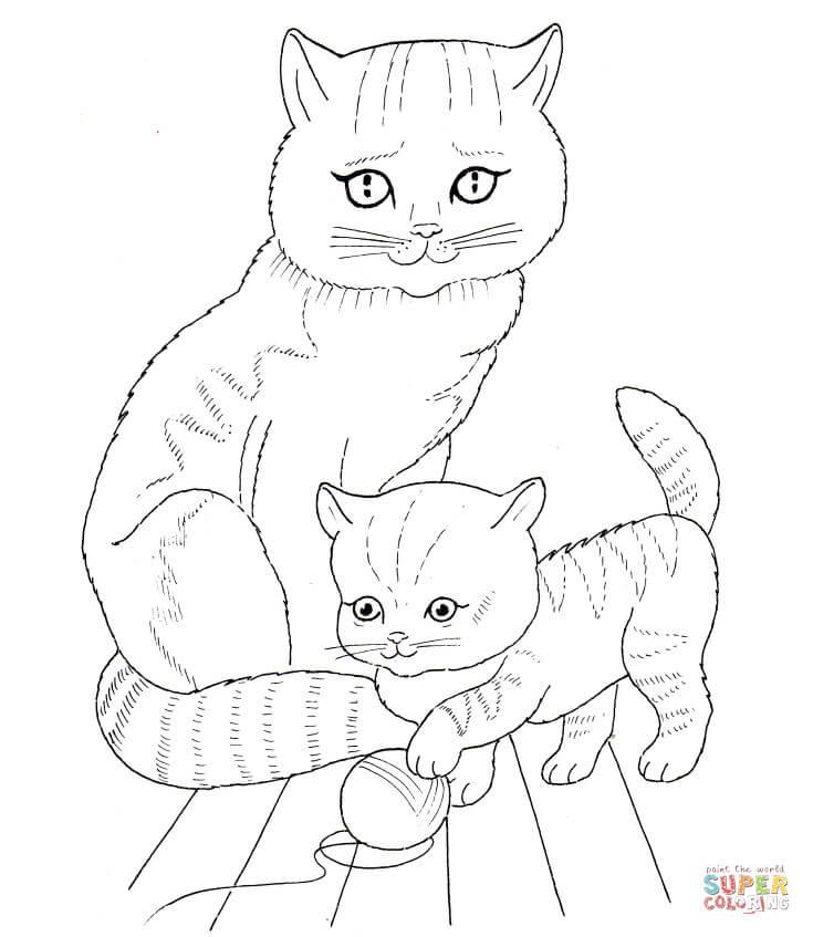 kätzchen ausmalbilder  malvorlagen  100 kostenlos