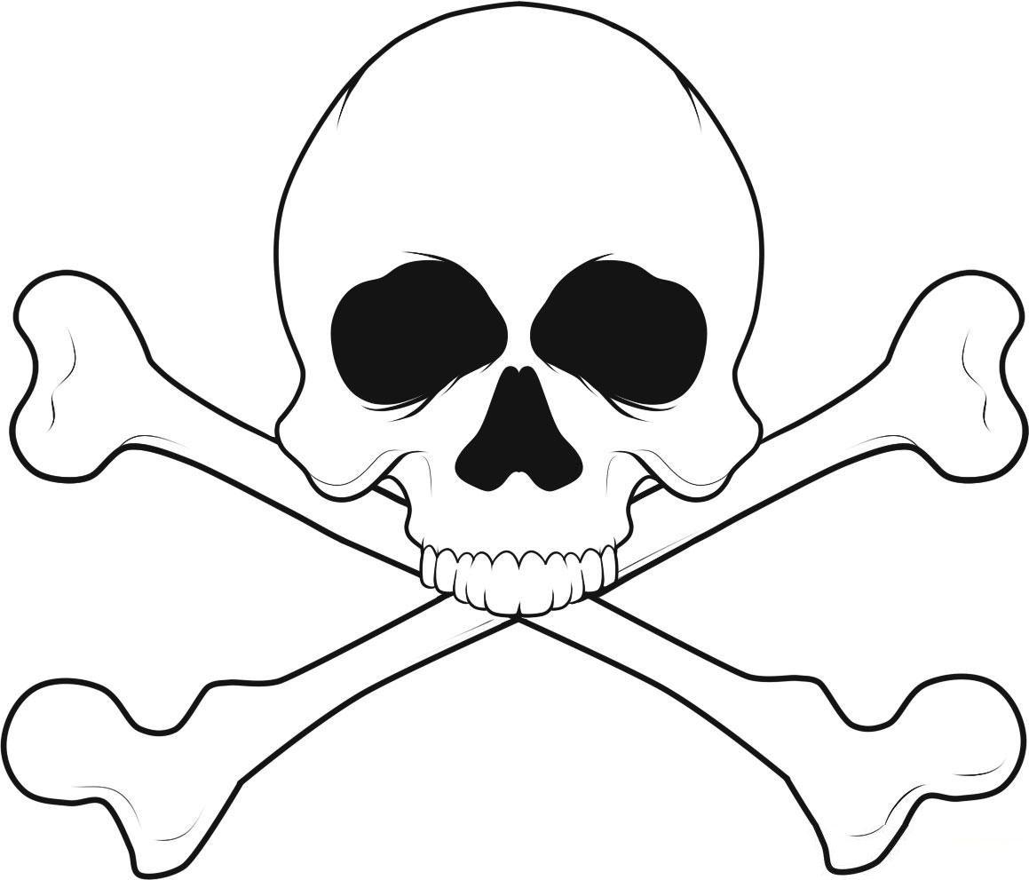 skelett ausmalbilder  malvorlagen  100 kostenlos