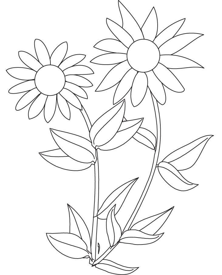 sonnenblume ausmalbilder  malvorlagen  100 kostenlos