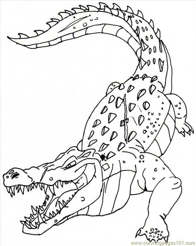 krokodil ausmalbilder  malvorlagen  100 kostenlos