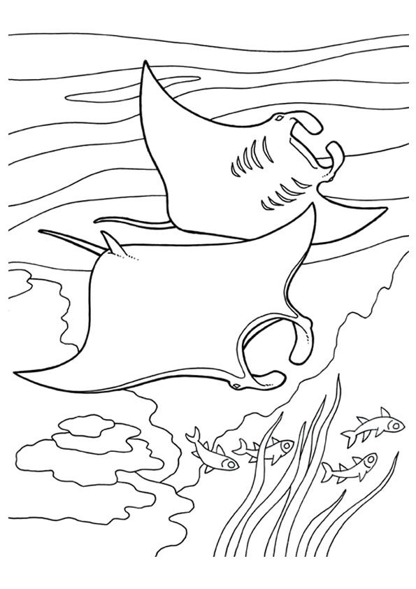 fisch: ausmalbilder & malvorlagen - 100% kostenlos