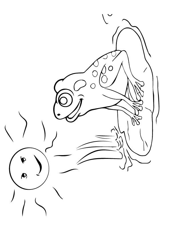 frosch ausmalbilder  malvorlagen  100 kostenlos