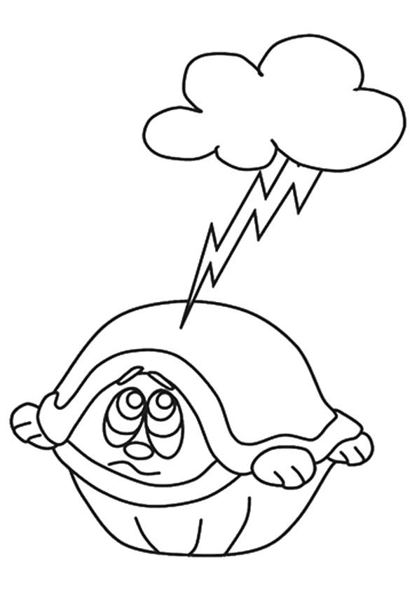 schildkröte ausmalbilder  malvorlagen  100 kostenlos
