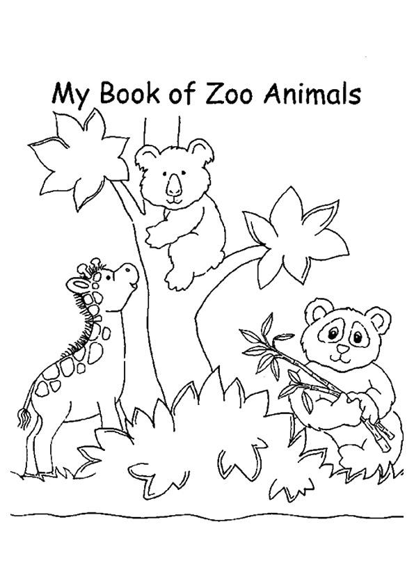 zoo ausmalbilder  malvorlagen  100 kostenlos